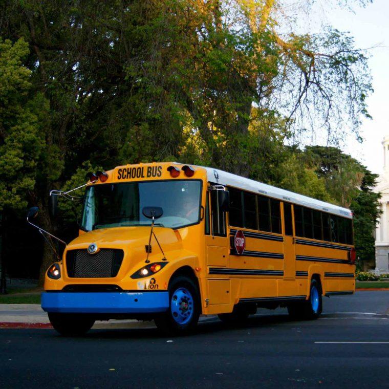 Lion buses elion